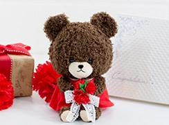 くまのがっこう モコモコジャッキー 赤いおはなぬいぐるみ+キラキラHAPPY BOX電報