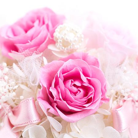 やさしいピンク色のローズ