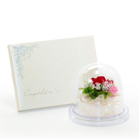 ドームスタイル エレガントレッド+キラキラHAPPYBOX電報