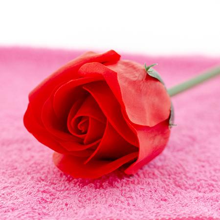 ピンクのタオルハンカチで包まれています。