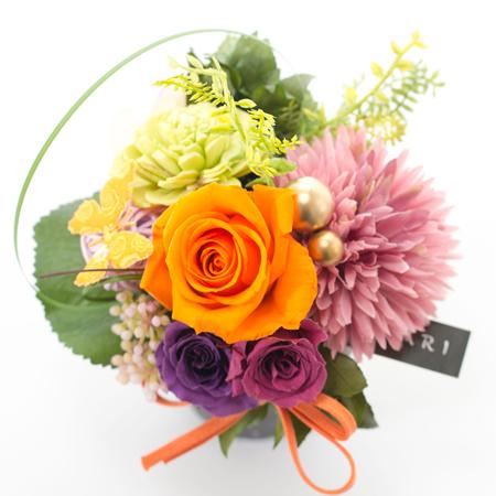 鮮やかなオレンジ色のバラが目を引きます