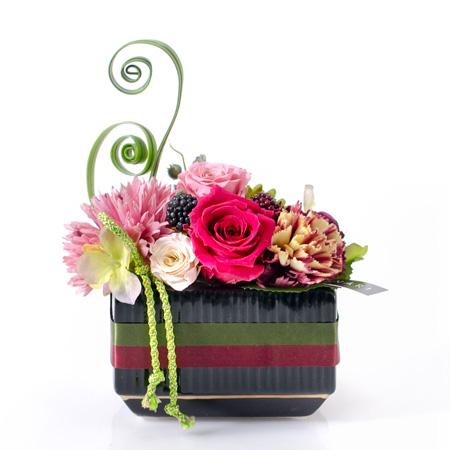 〈HANARI〉福帯 ピンク