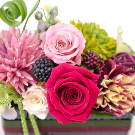 ピンクをメインとした華やかな色合いのローズたち