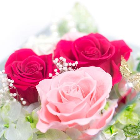 大きめのバラでボリュームがあります。