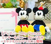 【ディズニー】My Picture ミッキー&ミニー ぬいぐるみ+ドキドキHAPPYBOX電報